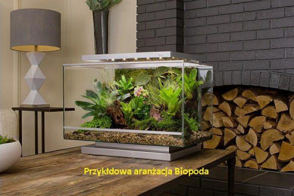 Biopod TERRA